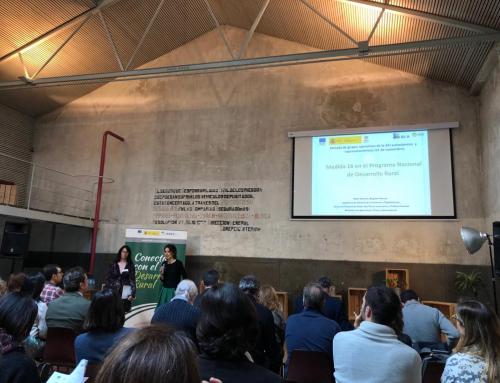 Jornada sobre Grupos Operativos de la AEI Autonómicos y Suprautonómicos